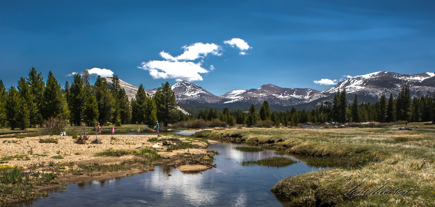Water sources for the meadow include two forks deep in Yosemite's wilderness—the Dana and the Lyell—and include three creeks—Budd, Delaney and Unicorn. The Tuolumne River runs through the middle of the meadows, for three miles, and is supplied by snowmelt and hill-slope aquifers. In spring as soon as the snow melts, it is not uncommon to see large areas of the meadows flooded and practically transformed into a lake.