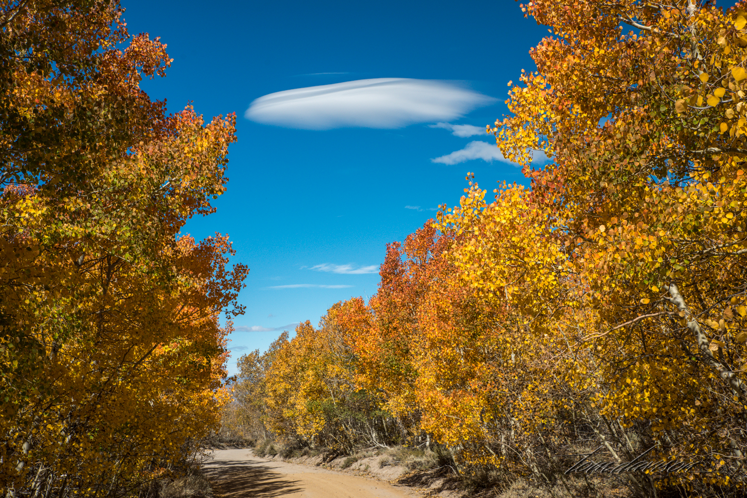 Lenticular clouds are commonly seen in this part of the country.