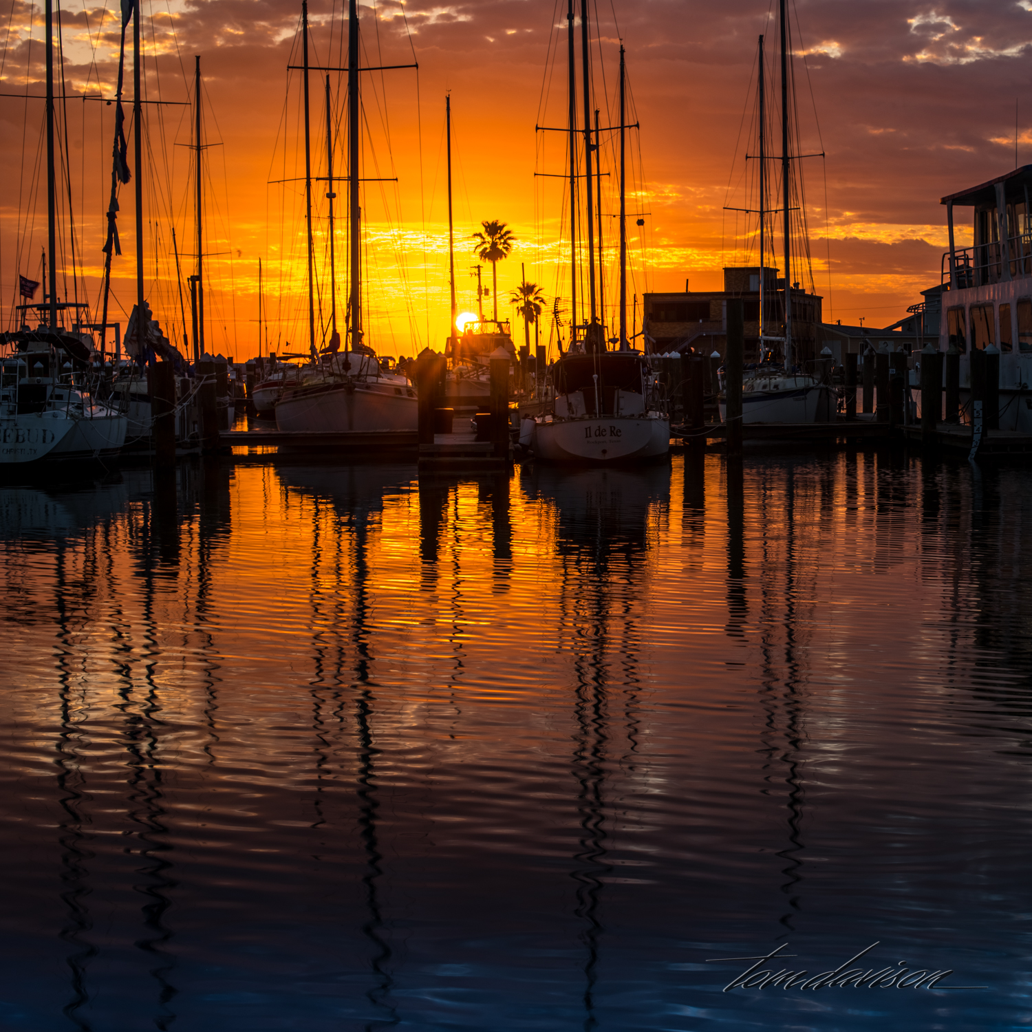 TD Boats and Sunsets-47.jpg