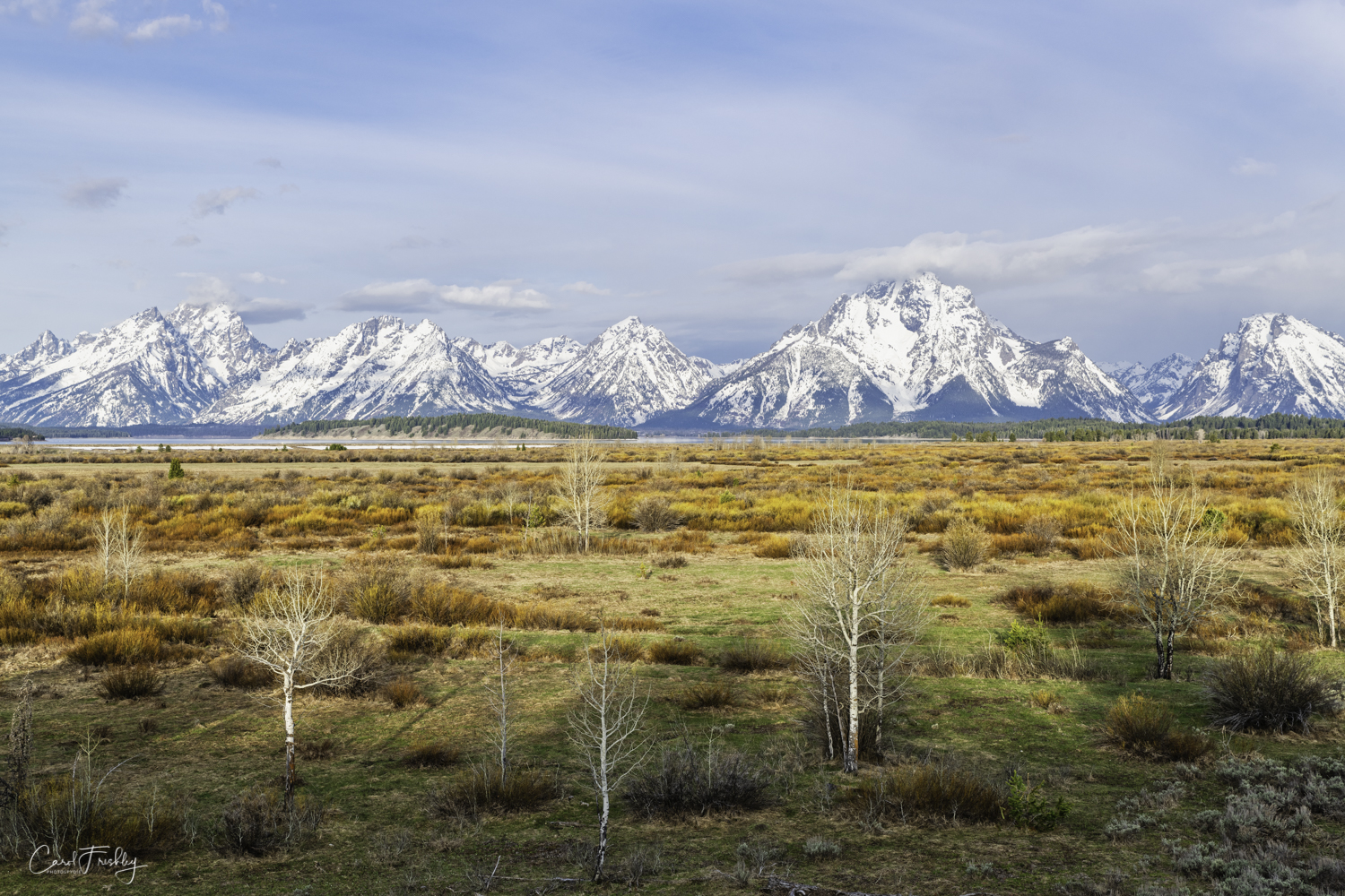 Teton National Park-1028.jpg