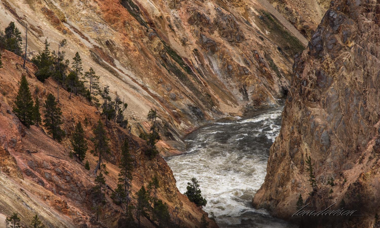 Y Grand Canyon TD-13.jpg