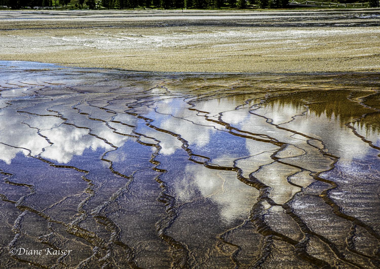 DK Yellowstone-24.jpg
