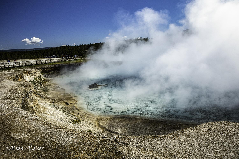 DK Yellowstone-22.jpg