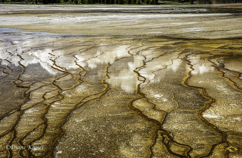 DK Yellowstone-25.jpg