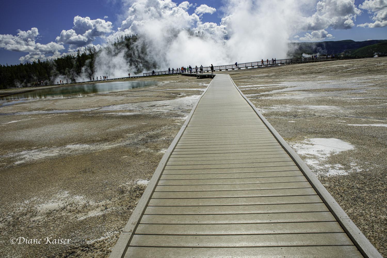 DK Yellowstone-33.jpg