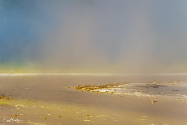 Prismatic Spring-67.jpg