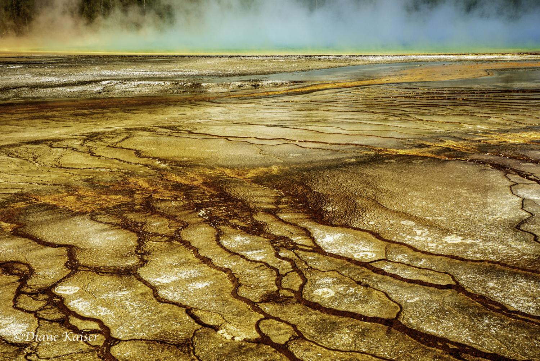 DK Yellowstone-26.jpg