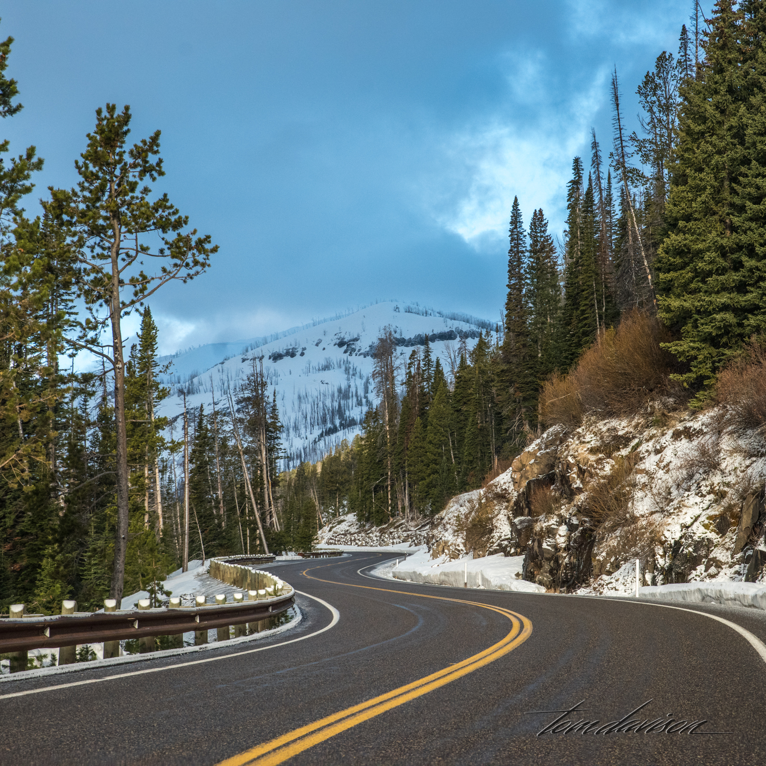 Y Road to Yellowstone TD-5.jpg