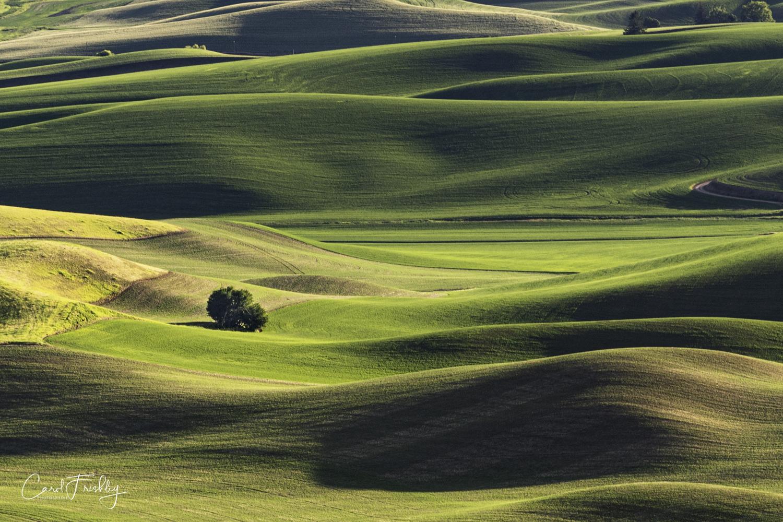 Palouse Valley-133.jpg