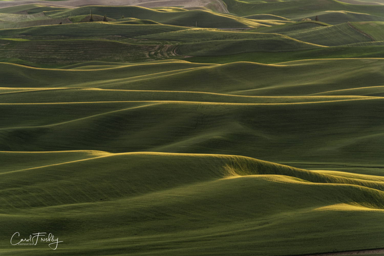 Palouse Valley-141.jpg