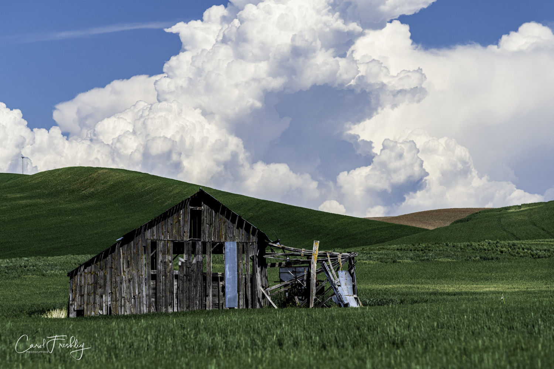 Palouse Valley-190.jpg