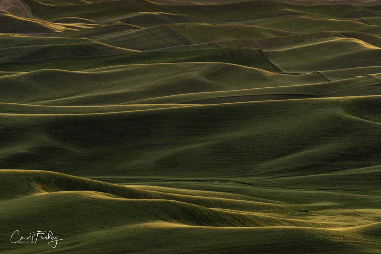 Palouse Valley-144.jpg