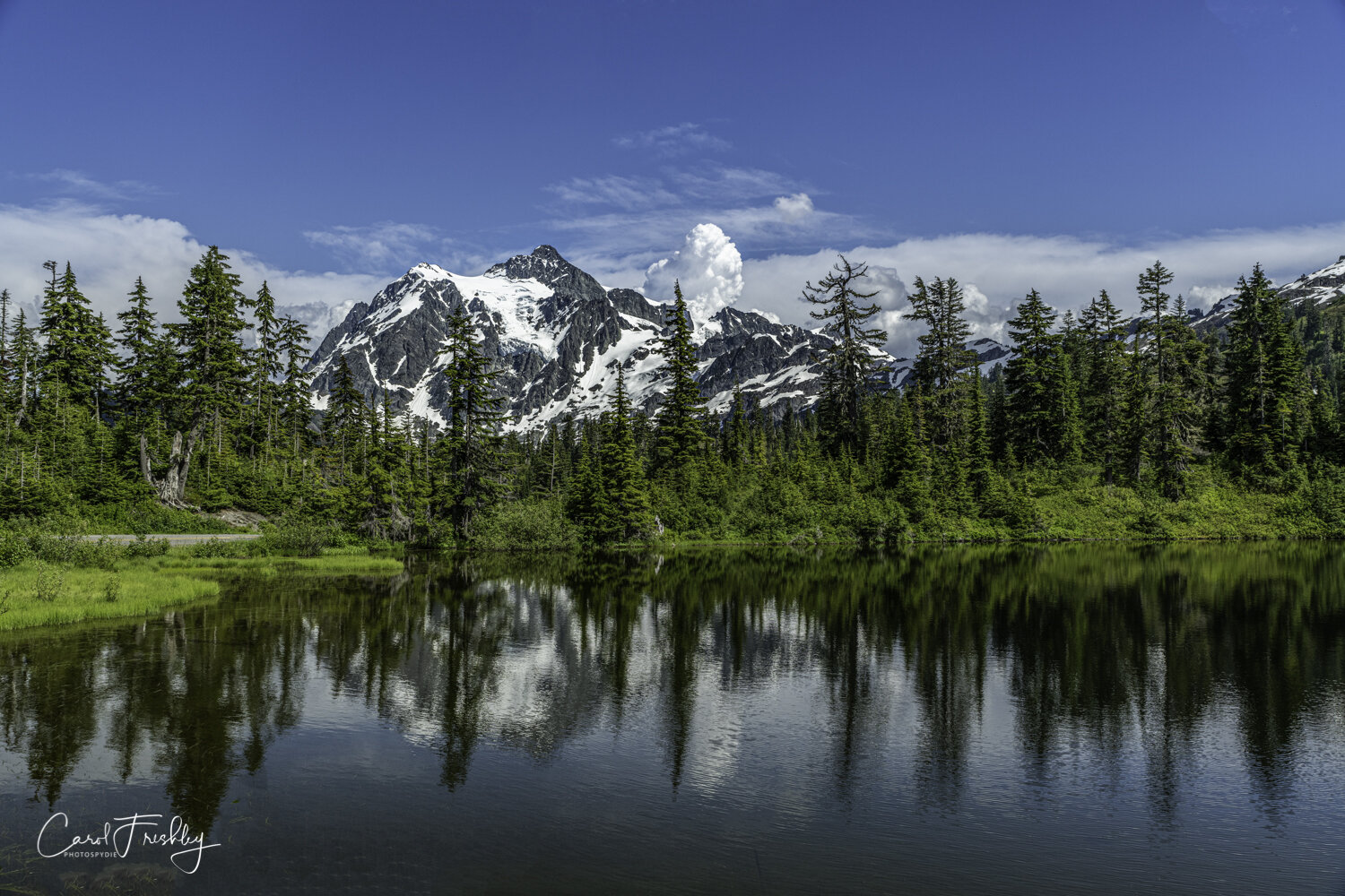 Picture Lake with Mt. Shuksan in the background.