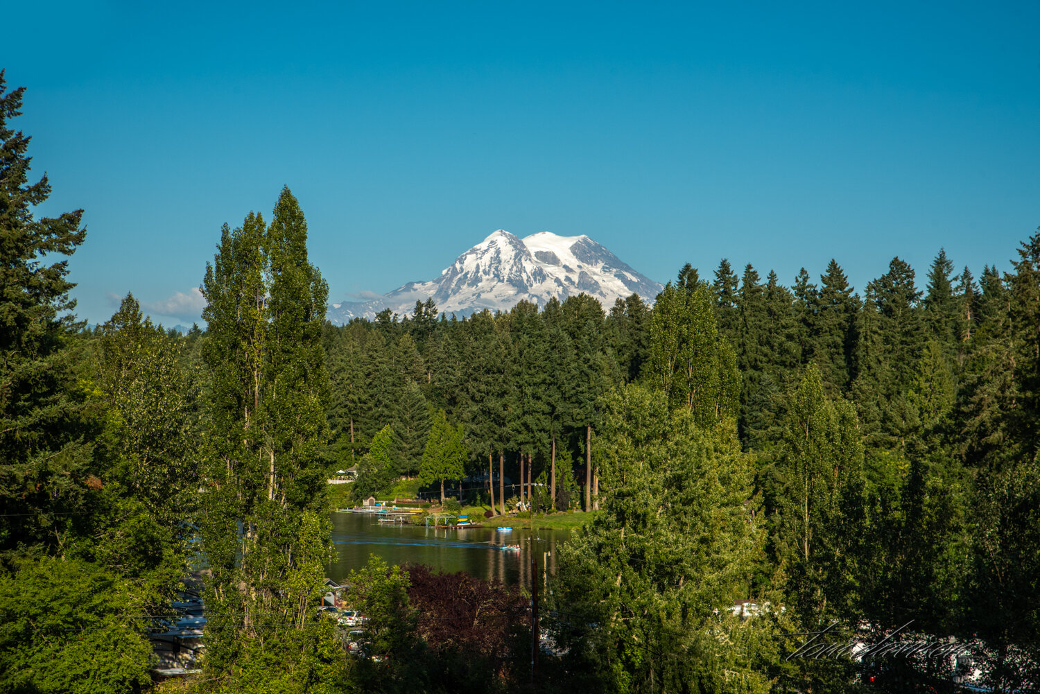 We stayed in a campground where Mt. Rainier could be seen from the road down into our camp.