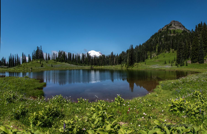 TD Mt Rainier-13.jpg