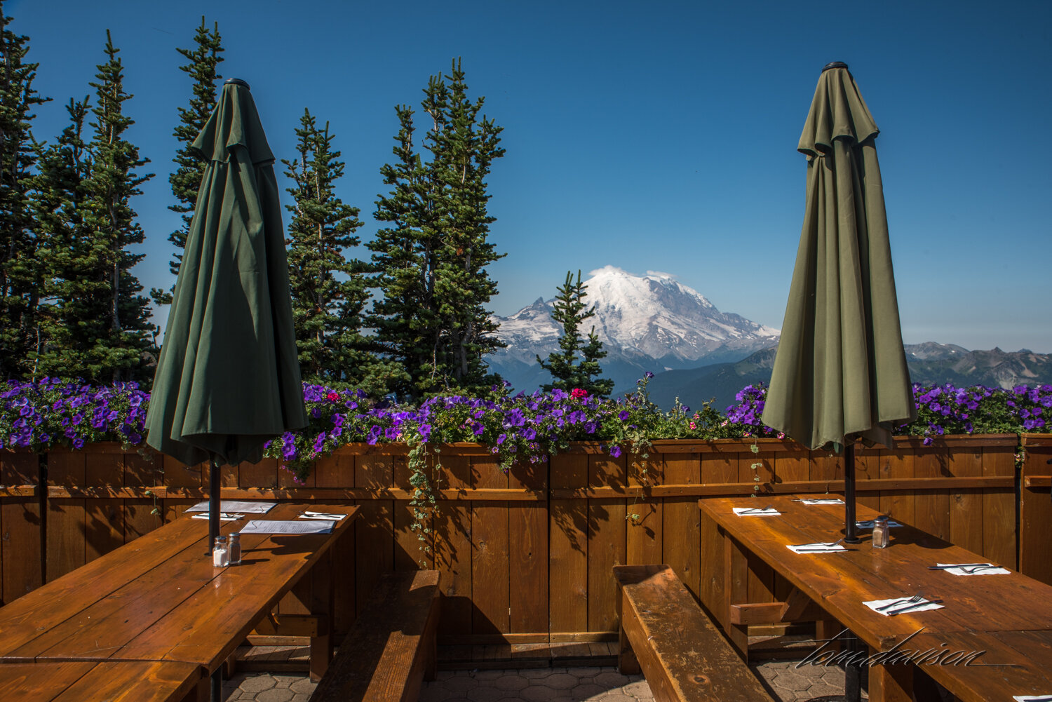 We were encouraged to take the gandola at Crystal Mountain to get a different view of Mt. Rainier. Ride, food and photography were all memorable.