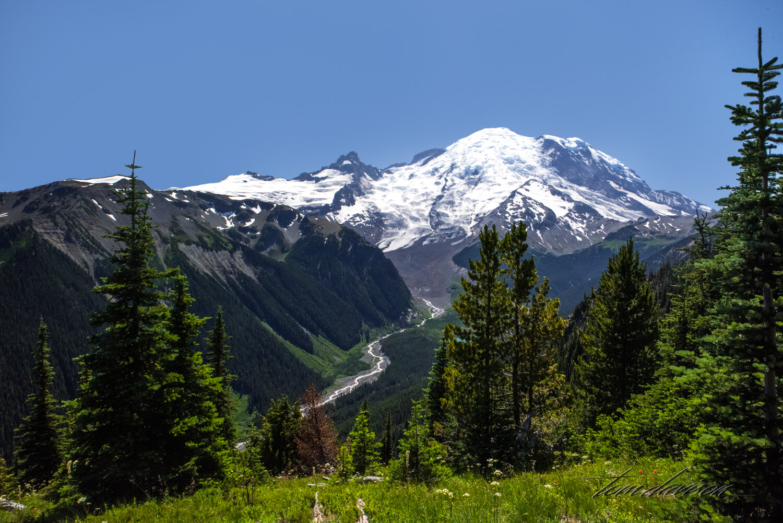 TD Mt Rainier-16.jpg