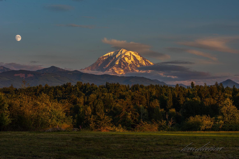 TD Mt Rainier-32.jpg