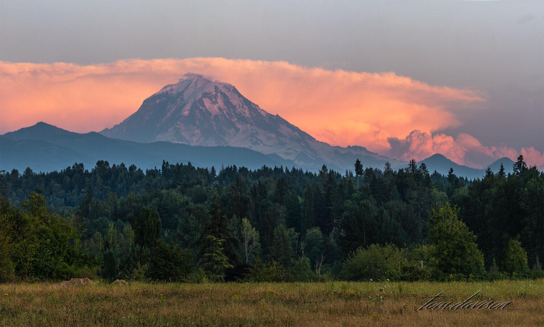 TD Mt Rainier-19.jpg