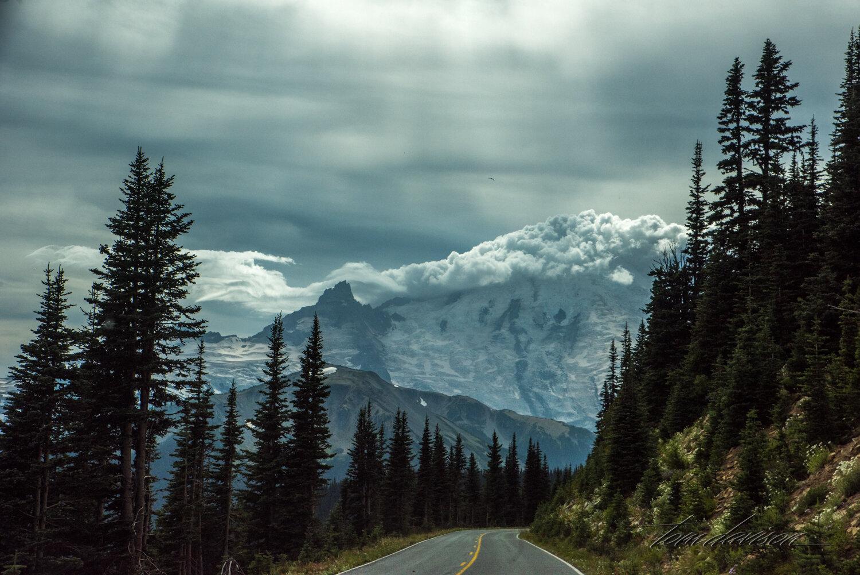 TD Mt Rainier-59.jpg