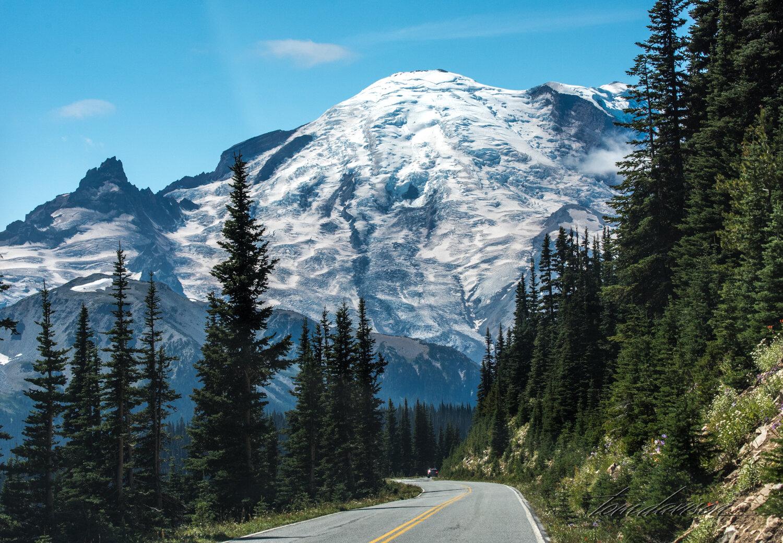 TD Mt Rainier-46.jpg