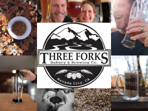 Three Forks collage1.jpg