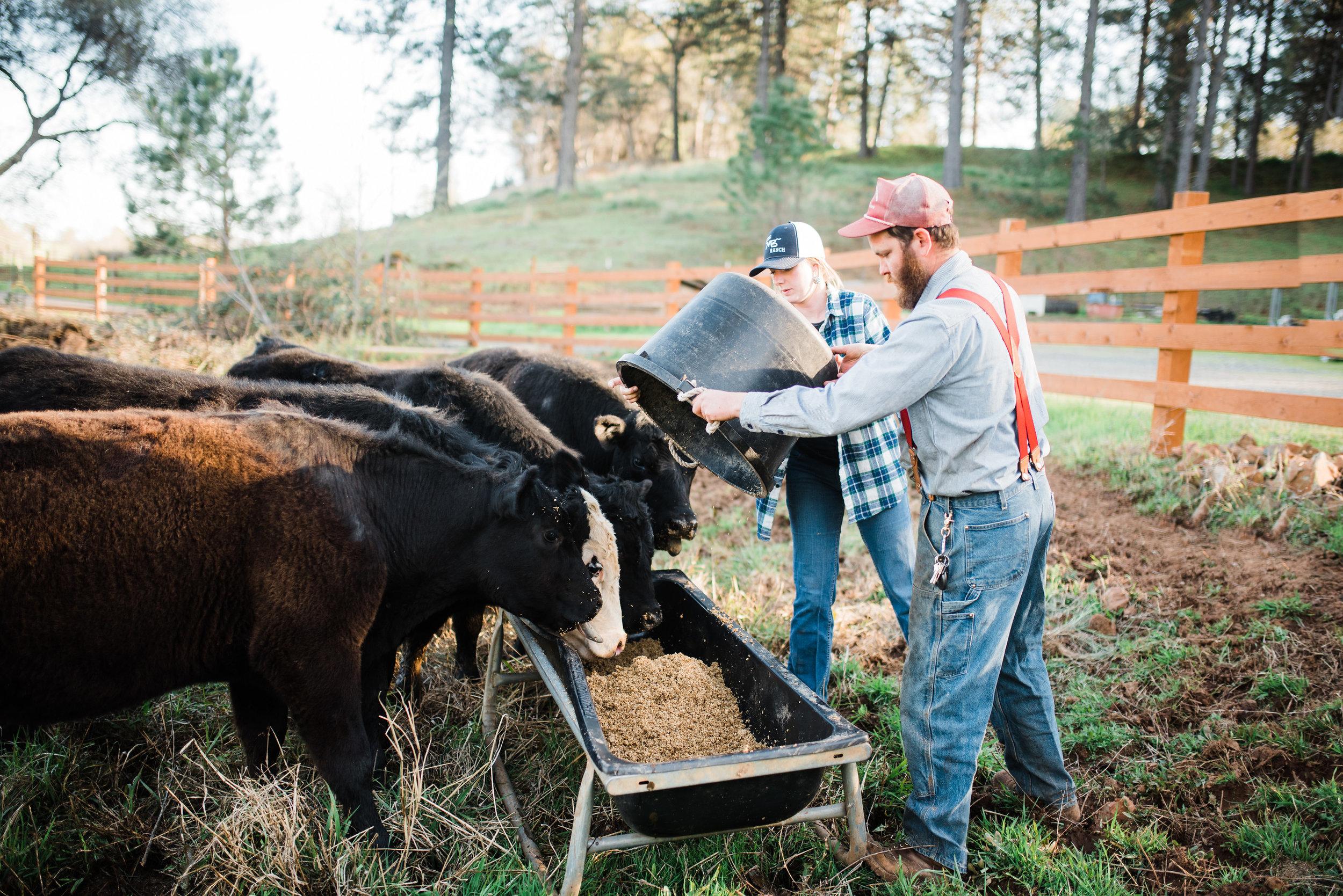 AM Ranch Photo: Angela Nunnick