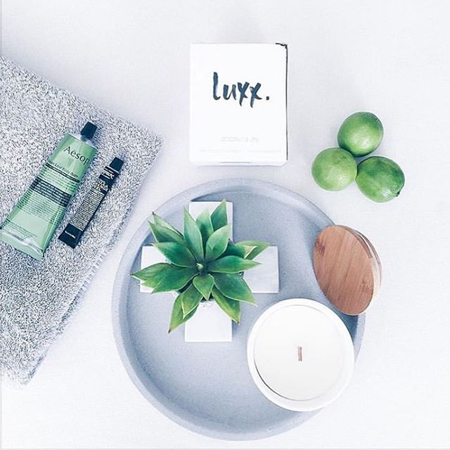 So fresh ✖️✖️with our  Coconut & Lime Scented Luxx Soy Candle.. #summer  #sofresh  #handpoured #luxxsoycandles  #luxxsoy #madewithlove  #supportlocal  #australianmade #soyscentedcandles #coconutandlime  @mintandfizz