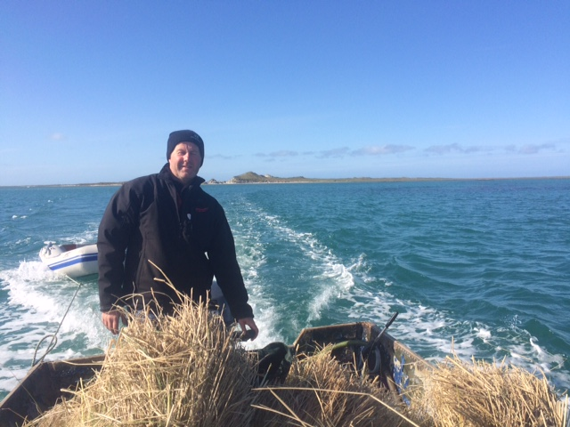 Neil Nicholson with some of the final marram grass needed for our thatched roof