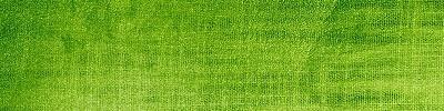 green-cloth-texture_vsmall.jpg