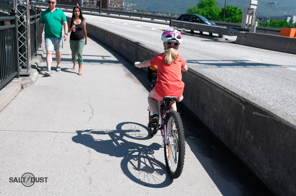 On Puddelfjord bridge