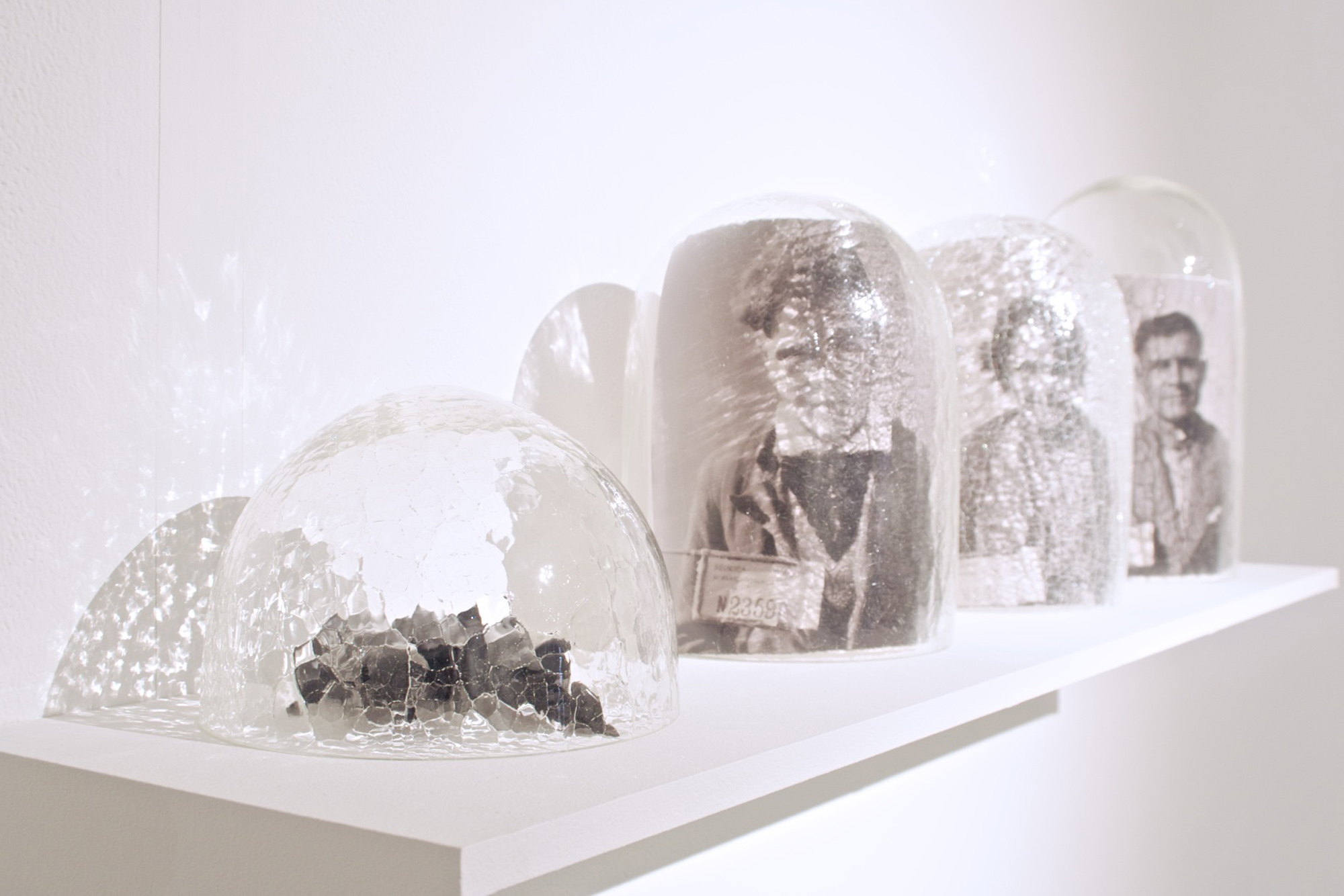 In 2013 Yhonnie Scarce was invited to submit work for the biennial National Artists' Self-Portrait Prize, overseen by the University of Queensland Art Museum. Glass domes, family photographs from the Tindale Collection. Photography by Alex Lofty.