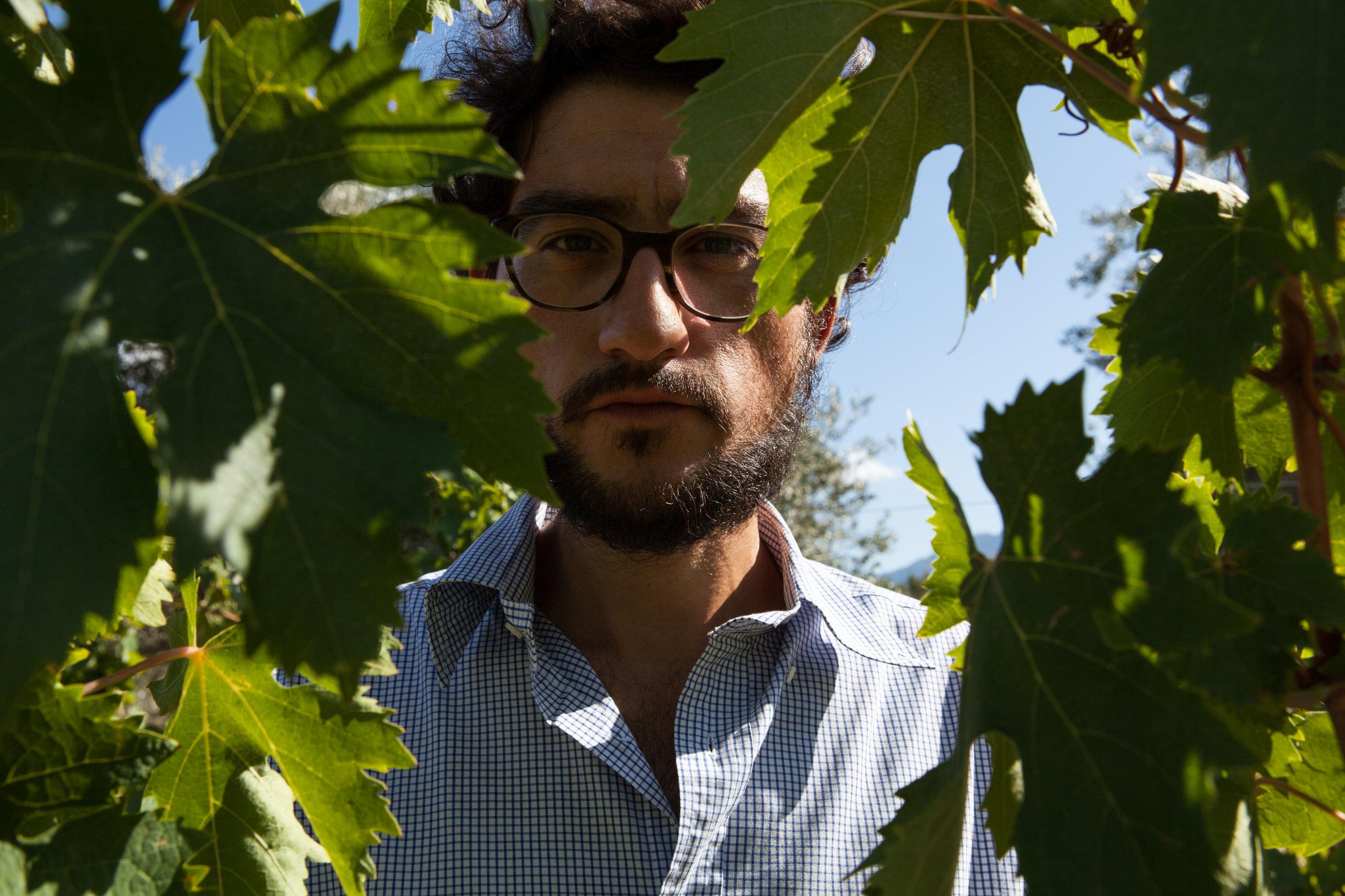 Luca Paolo Virgilio, Azienda Agricola Caprera
