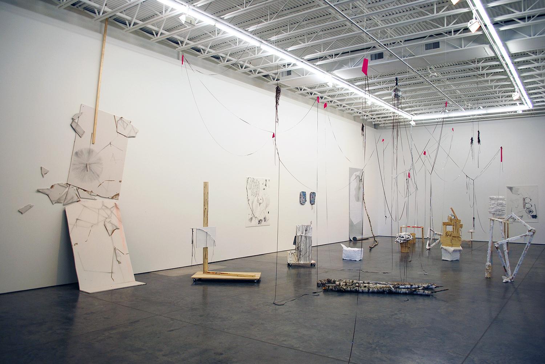 """Rerites,"" 2012, Dolphin Gallery, Kansas City, MO"