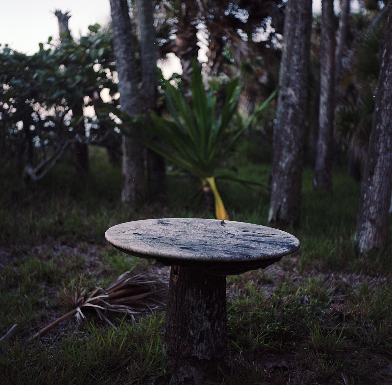 florida table.jpg