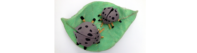 3_ladybugs_widened.jpg