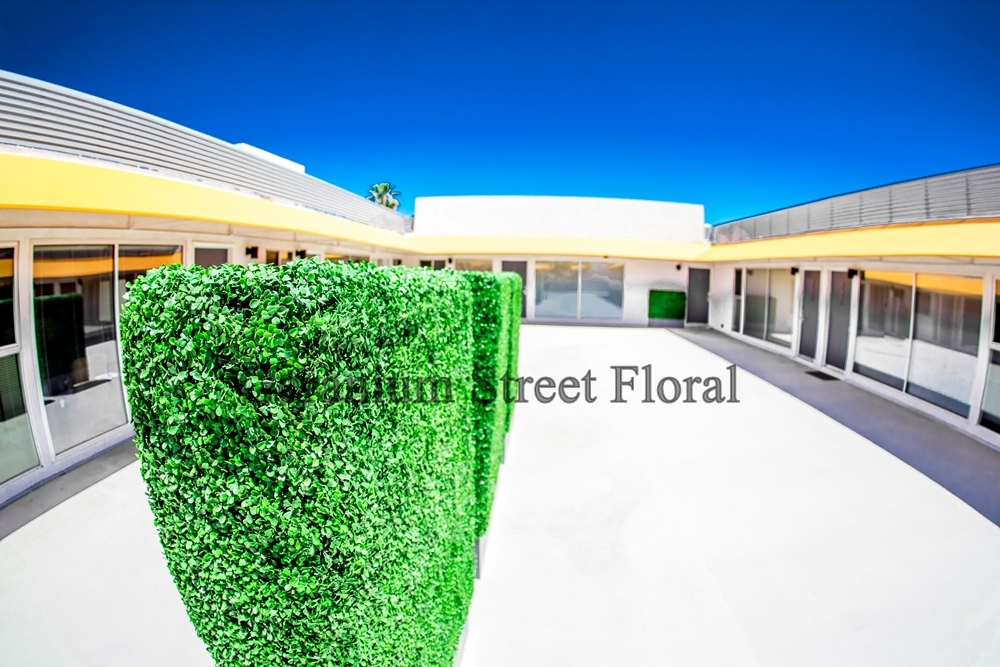 custom hedges located in palm springs, CA.