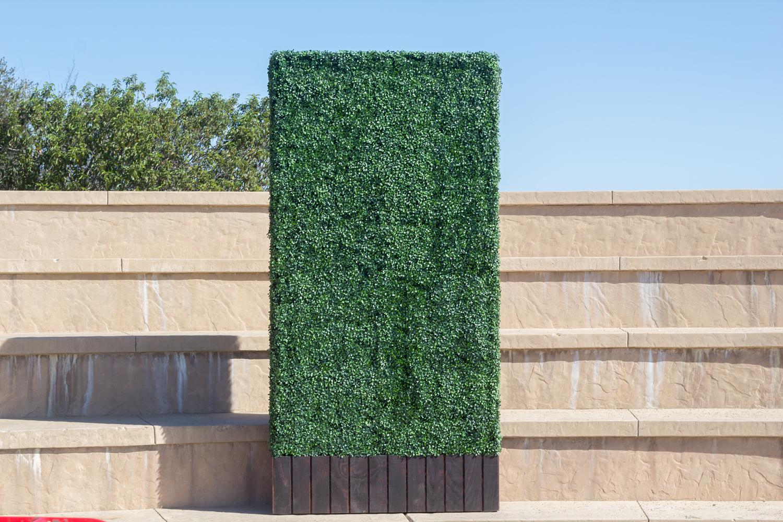 rental-hedge-8.jpg