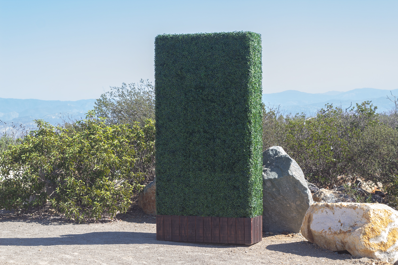 rental-hedge.jpg