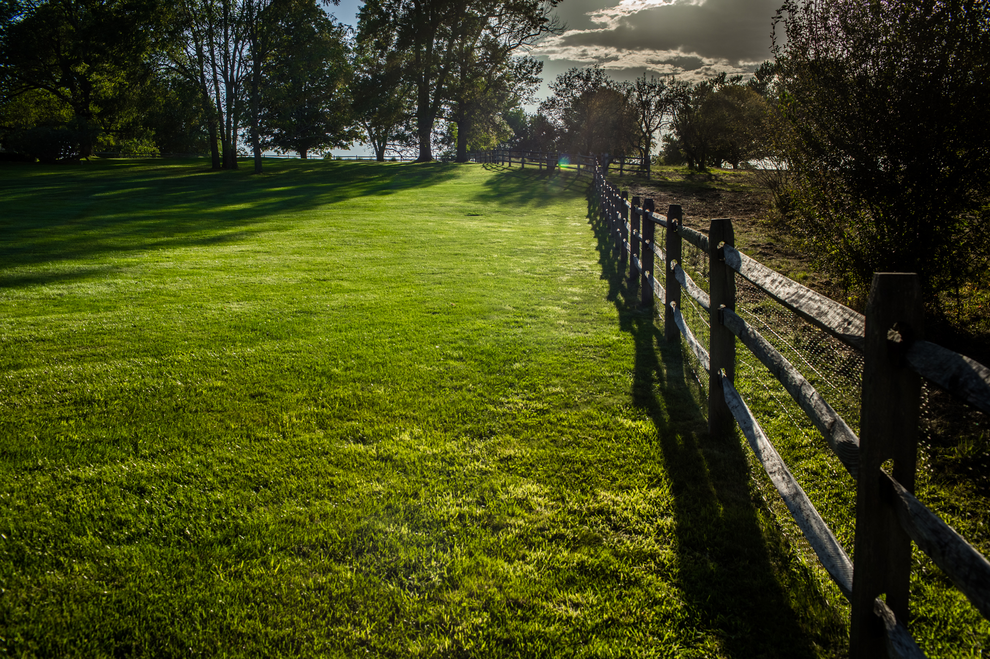 Lawn Maintenance, Westchester County, NY