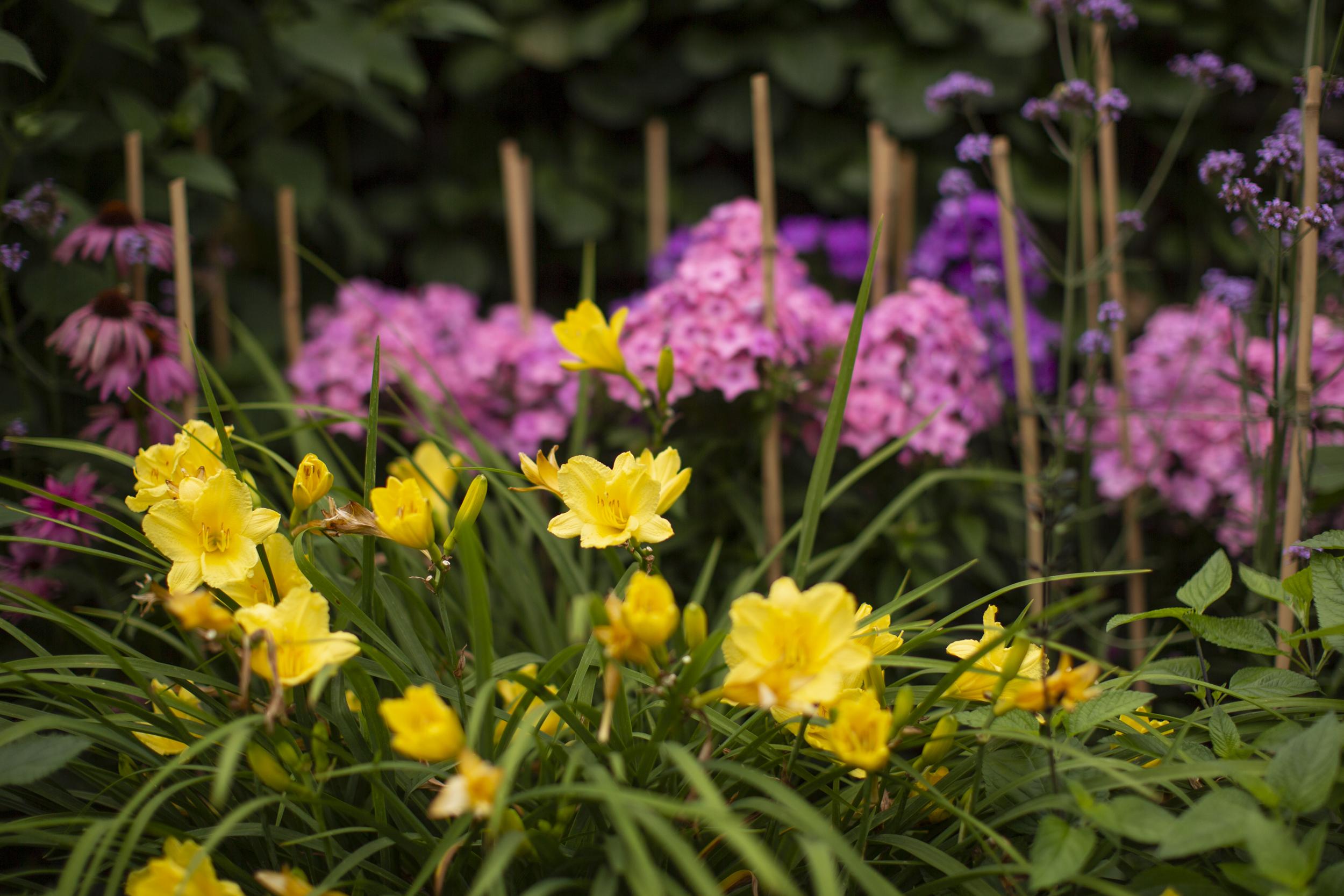 Ridgefield Landscaper_10.jpg