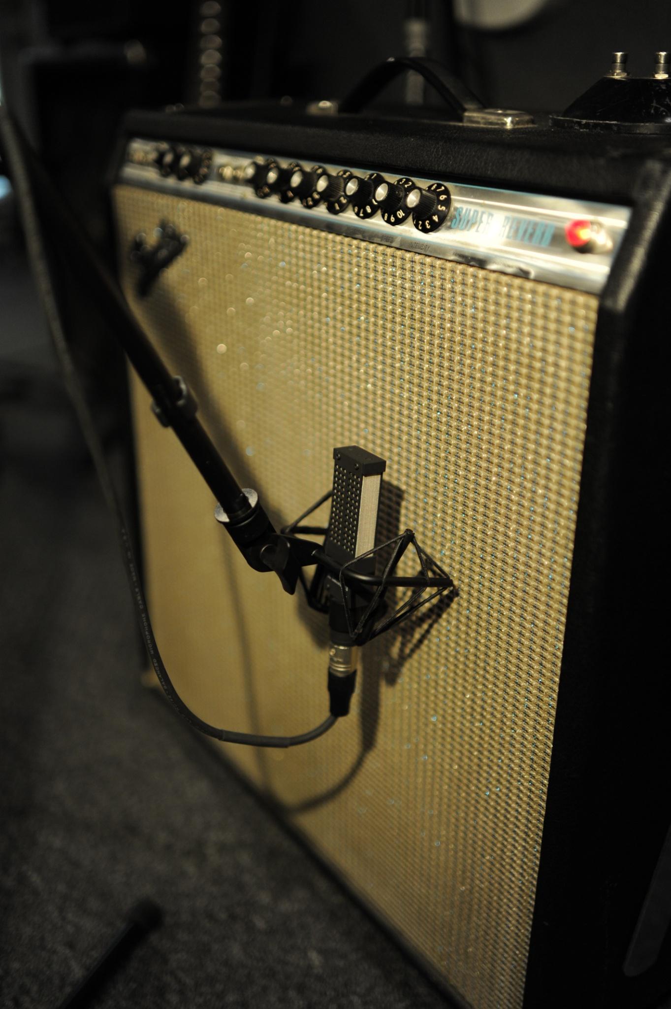 Brian Tarquin, Jungle Room Studios . Photo credit: Ricky Restiano
