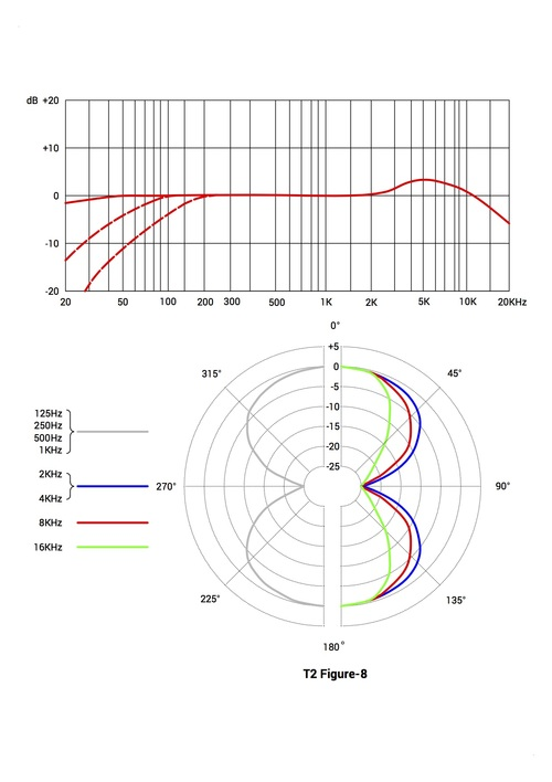 T2 Figure-8.jpg