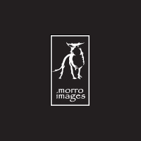 Morro Images