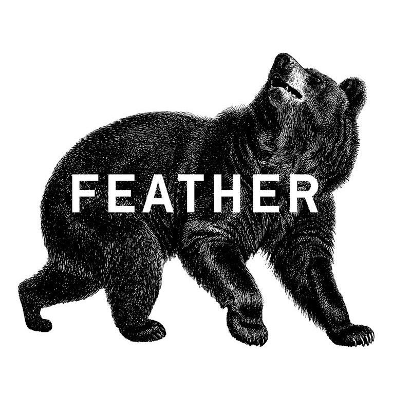 Studio Feather