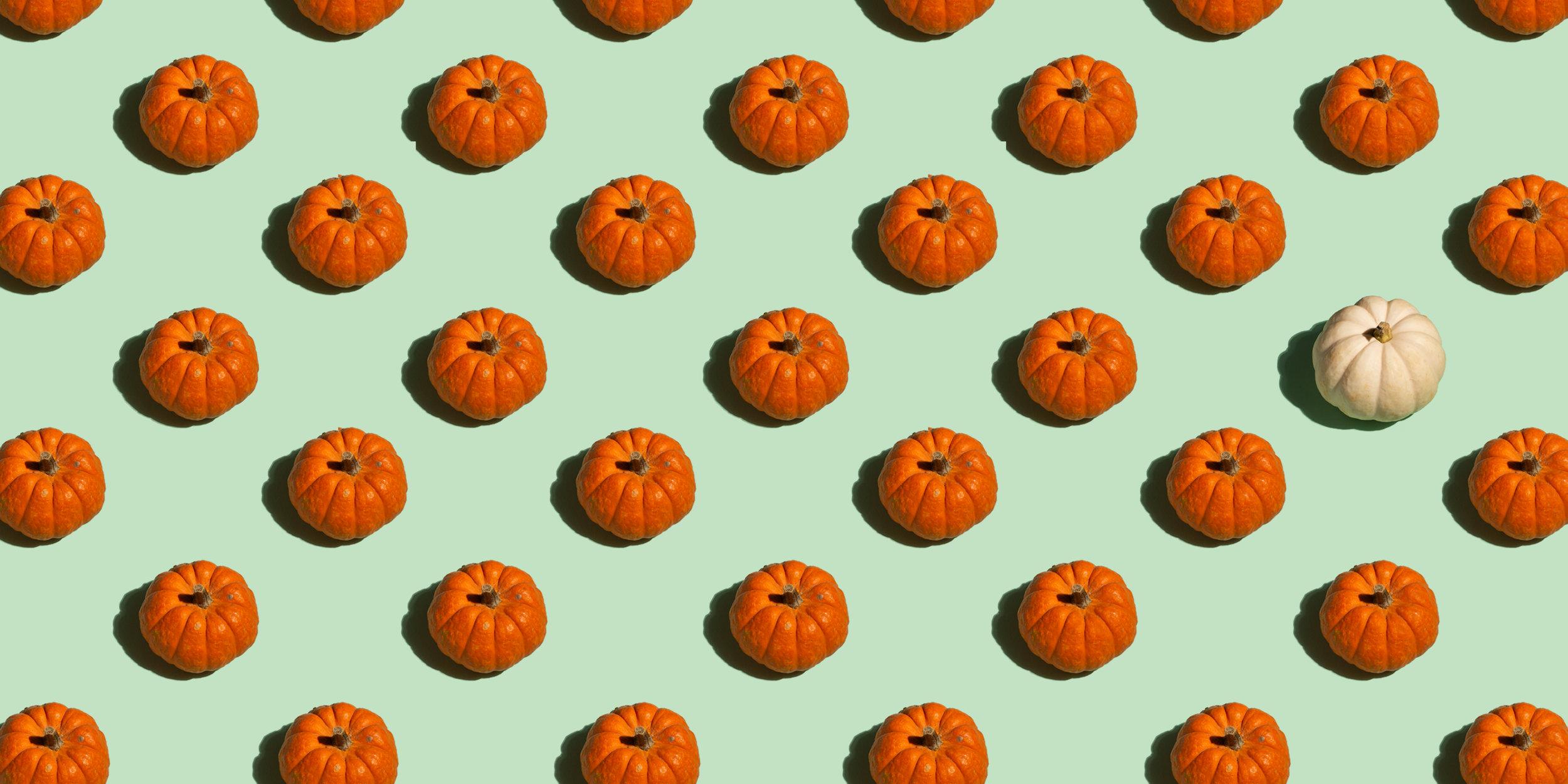 Pumpkin Pattern.jpg