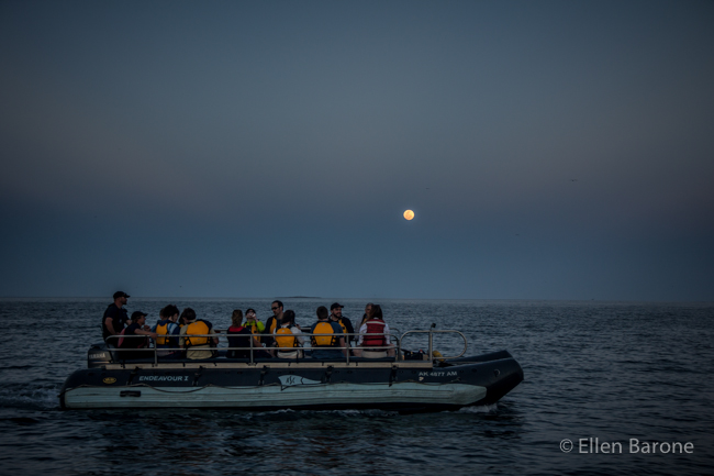 Full moon rise, Safari Endeavour skiff, Sea of Cortés.