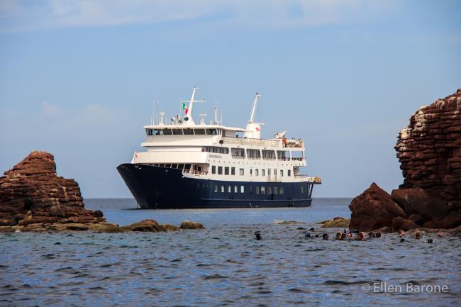 Safari Endeavour, Los Islotes, Sea of Cortés.