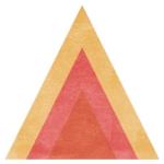 Triangle Icon.jpg