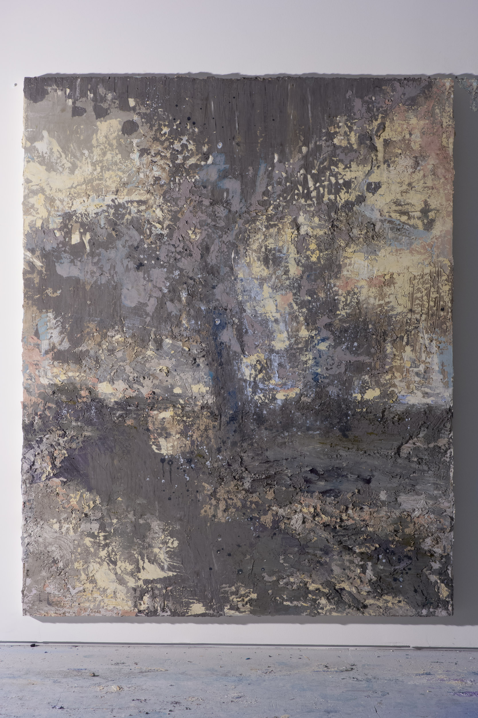 Shelley Vanderbyl - Reclaimed Ash (Side Light) - 2016 - Fresco on Panel - 48x60.jpg